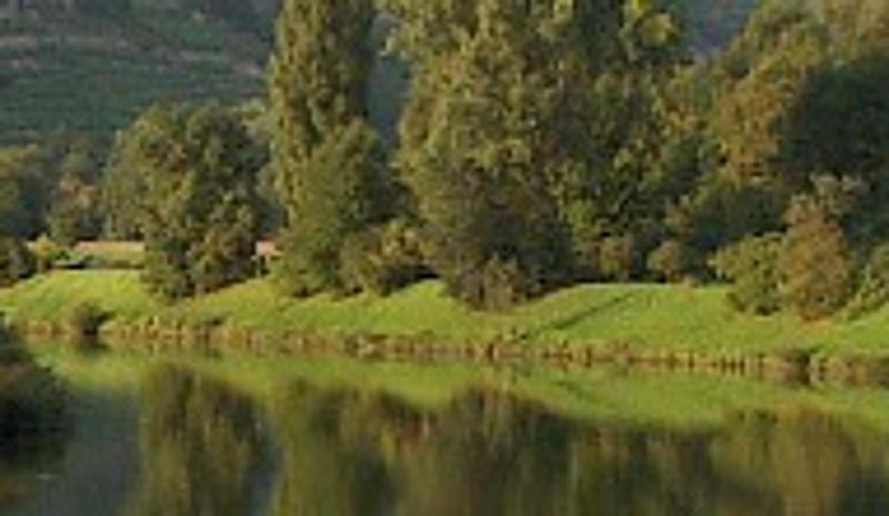 Foto Blick auf den Neckar von der Brücke in Pleidelsheim